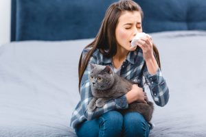 How to deal with cat allergies so you can still own a cat